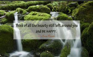 piensa en toda la belleza que tienes a ti alrededor y se feliz