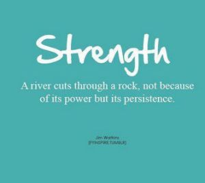 un rio ,tiene su fuerza por su persistencia