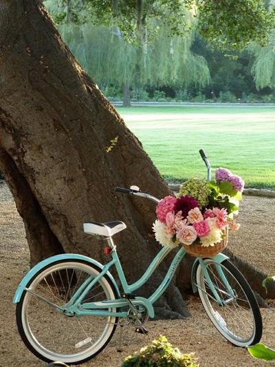 bicicletas bikes via