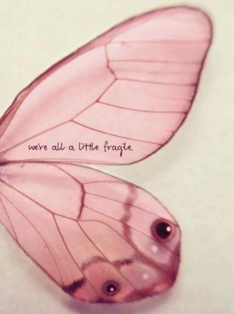 todos fragiles