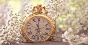 Tiempo de flores :)