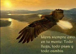 Y volar, sin que nos hipotequen las alas.